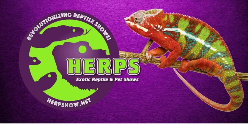HERPS Exotic & Pet Shows